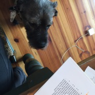 Four-legged writing buddy